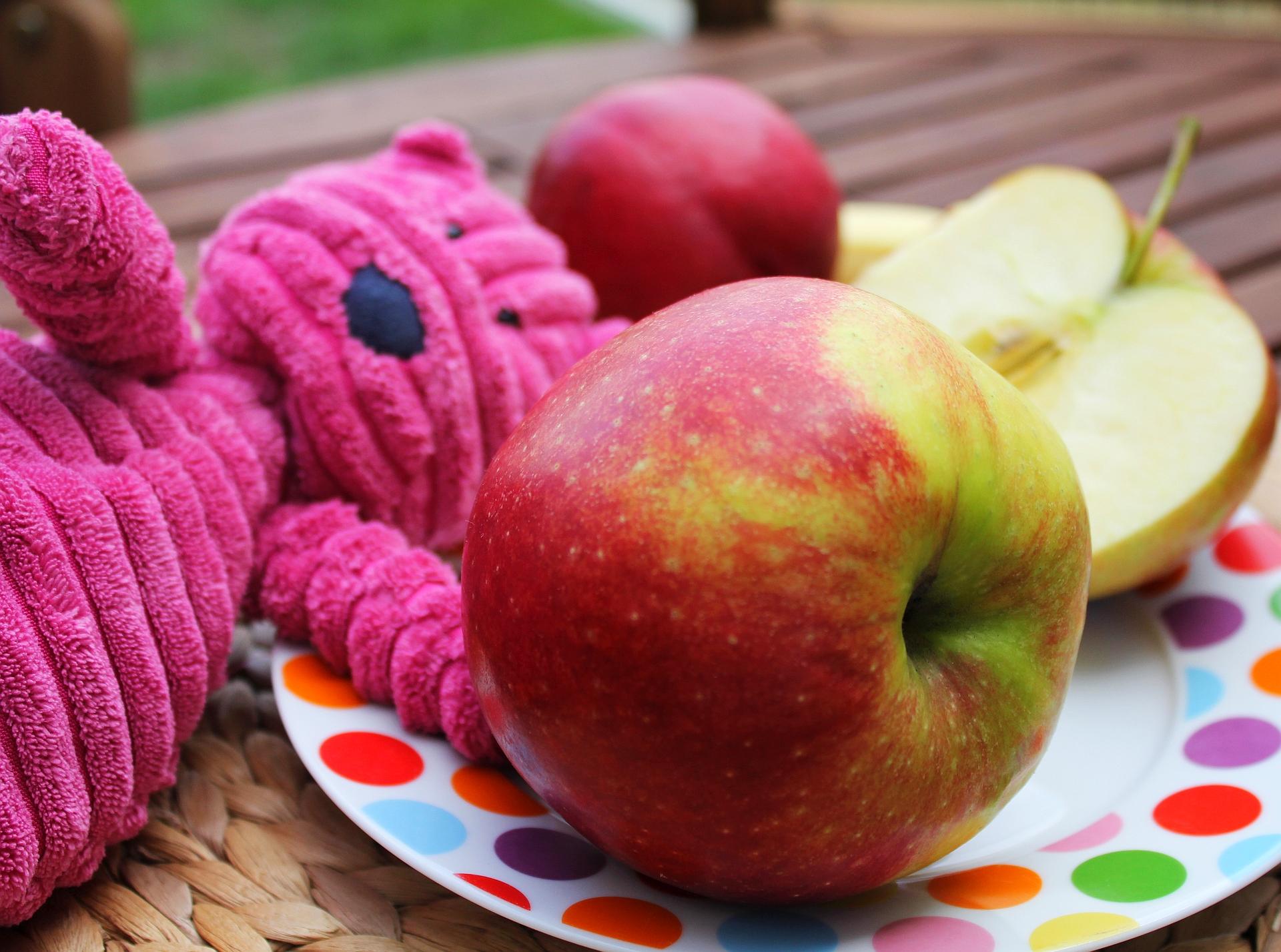 owoce w diecie dziecka